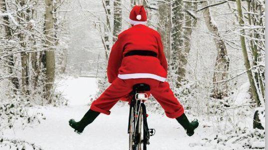 Unusual Idea for Christmas Holiday